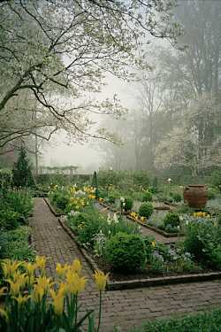 Garden in mist -- by Mary Jean Peters